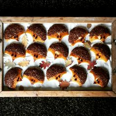 Traktatie school - egels - eierkoek met hagelslag