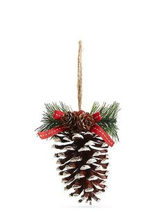 White Tipped Pinecone | Marks & Spencer London