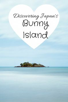 Have you heard of Okunoshima? It's an island in Japan populated by bunnies! Here is how we discovered Japan's Bunny Island.