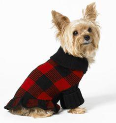 Image detail for -ralph-lauren-cashmere-ruffle-dog-sweater