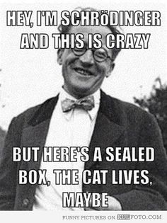 This Schrödinger meme. | 24 Jokes Only Psychology Nerds Will Find Funny