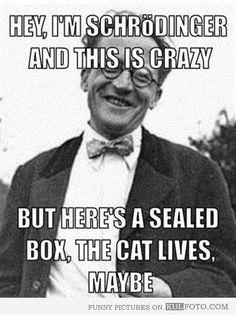 This Schrödinger meme. | 24 Jokes Only Psychology Nerds Will Find Funny