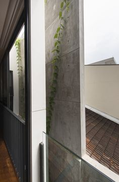 Gallery Of Airwell House / ADX Architects   7