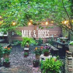 #hiddeninplainsight @milkandrosesbistro in #greenpoint #brooklyn is a #beautiful #destination for a #great #garden #experience mixed with #nice #wine and #awesome #people by alfredo_muccino