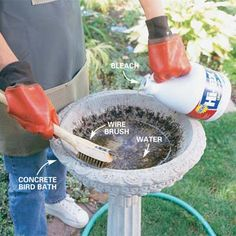 DIY Tip of the Day: How to Clean a Birdbath. Stains in birdbaths are usually caused by minerals in water and organic debris. Fill the basin with a quart of water, add 1/2 cup of household bleach, then scrub the basin with a wire brush until clean. (Use a soft scrub brush rather than a wire brush on ceramic surfaces.) Don't splash bleach on nearby plants. Rinse well to ensure the birdbath remains chemical-free.