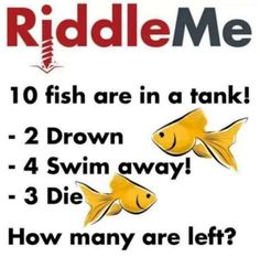 While these impossible riddles can be frustrating when you first read them, nothing beats the satisfaction you'll feel at solving them. Impossible Riddles With Answers, Tricky Riddles With Answers, Riddles To Solve, 10 Riddles, Challenging Riddles, Mind Riddles, Funny Jokes And Riddles, Tricky Games, Challenges