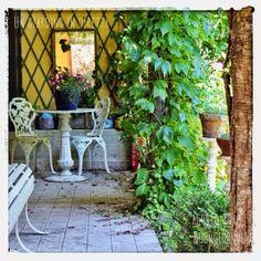 In diretta dal giardino: il mio specchio in giardino, ti piace? buongiorno giardinieri