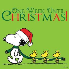 One week until Christmas!