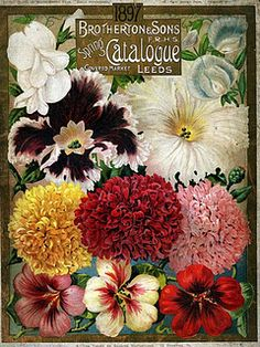 Seed Catalogue, 1897