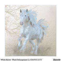 White Horse - Photo Enlargement