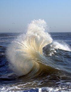 """Rip-Wave"" at dawn, Atlantic Ocean (photo by William  Dalton, 3/2/2007)."