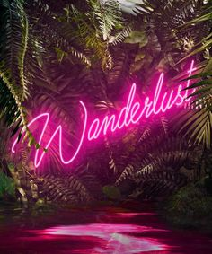 Pink Aesthetic Discover Yee Wong - Disco in the Jungle: Forever Wild Yee Wong Print - Disco in the Jungle: Forever Wild Neon Jungle, In The Jungle, Jungle Party, Estilo Tropical, Neon Words, All Of The Lights, Neon Aesthetic, Disco Party, Photo Wall Collage