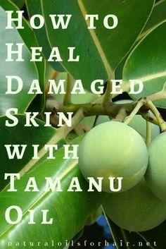 How to Heal Damaged Skin with Tamanu Oil