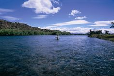 Este río importante, río Limay. Puede pescar por unos pescados volandan.