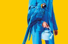 Art + Commerce - Artists - Photographers - Maurizio Cattelan and Pierpaolo Ferrari - Toiletpaper Issue 10