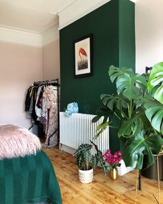 Turquoise Room Decoration– Bedroom is very special place as we spent most of out time in this area whether just to relax or chill after . Interior, Best Bedroom Colors, Home Bedroom, Bedroom Green, Home Decor, Room Colors, Bedroom Colors, Interior Design Bedroom, Master Bedrooms Decor