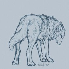 50 Ideas for art drawings wolf artworks 50 idées de dessins d'art Animal Sketches, Animal Drawings, Cute Drawings, Drawing Sketches, Wolf Drawings, Drawing Animals, Sketching, Hipster Drawings, Simple Drawings