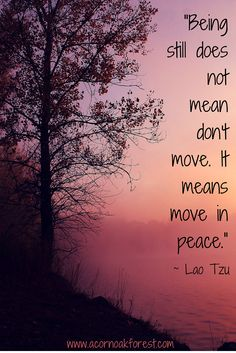 """Being still does not mean don't move. It means move in peace."" - Lao Tzu. Mindful Life"
