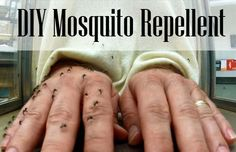 The best Mosquito Repellent!This one is with Alcohol, whole cloves and baby oil. DIY Homemade Mosquito Repellent - DIY for Life Diy Mosquito Repellent, Insect Repellent, Repelir Mosquitos, Prevent Mosquito Bites, Vicks Vaporub, Pest Control, Home Remedies, Natural Remedies, Herbal Remedies