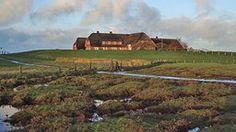 Reetgedecktes Haus auf der Hallig Gröde