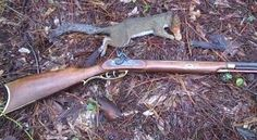 Traditions Crockett .32-caliber rifle that the author built from a kit takes its first squirrel.