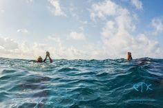 Diving in private small groups is fun safer.   #scuba #diving #PlayaDelCarmen #Mexico #traveltips