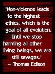 Non-violence leads to the highest ethics, which is the goal of all evolution. Until we stop harming all other livingi beings, we are still savages.   ~Thomas Edison