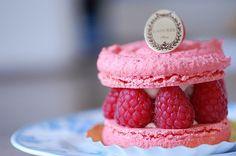 Résultats Google Recherche d'images correspondant à http://media1.kawaiifoods.com/2011/10/Raspberry-Macaron-Dessert-Pink.jpg