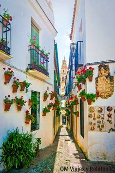 Calleja-del-Pañuelo-Córdoba Porch And Terrace, Beautiful Places, Beautiful World, Portuguese Culture, Andalucia Spain, Argentina Travel, Spain And Portugal, Spain Travel, Travel Inspiration