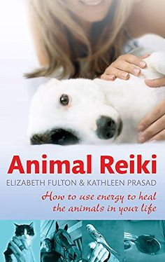 The Healing Powers of Reiki - Reiki: Amazing Secret Discovered by Middle-Aged Construction Worker Releases Healing Energy Through The Palm of His Hands. Cures Diseases and Ailments Just By Touching Them. And Even Heals People Over Vast Distances. Chakras Reiki, Le Reiki, Reiki Healer, Usui Reiki, Cabinet Medical, Animal Reiki, Reiki Symbols, Reiki Meditation, Yoga