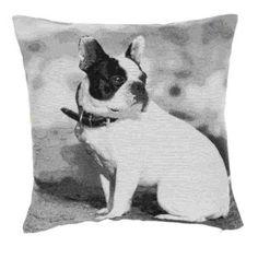 Kissenbezug Kissenhülle Kissen Hund grau 45 x 45 cm...