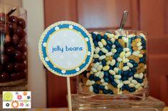 Blue and yellow wedding- Fresh, crisp and fun. Lemons,daisy flower balls and a candy buffet lend charm.
