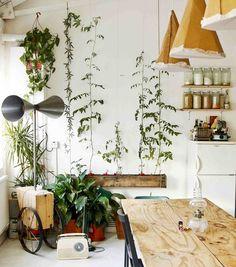 Tottenham loft - great use of indoor plants to soften a bare interior Indoor Garden, Indoor Plants, Home And Garden, Hanging Plants, Interior Exterior, Interior Architecture, Interior Design, Interior Ideas, Loft Spaces