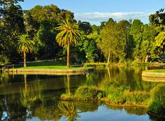 The lovely Royal Botanic Gardens found on the South Bank of the Yarra River in Melbourne