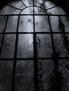 Dark window and what seem to be overgrown trees outside Gothic Aesthetic, Slytherin Aesthetic, Gray Aesthetic, Arte Obscura, Dark Paradise, Dark Photography, Dark Places, Dark Wallpaper, Dark Fantasy