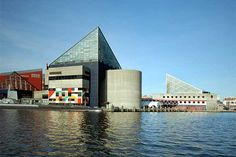 National Aquarium in Baltimore - so cool . . . you are in the inside of the tank and the sea life surrounds you.  View of the Baltimore Aquarium as seen from a ride on the Water Taxi