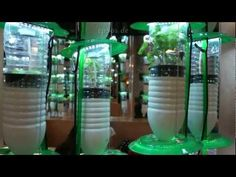 Comprehensive hydroponic lighting guide for indoor & outdoor plants. Best grow lights include LED lights, fluorescent grow lights and high pressure sodium growing lights. Hydroponic Farming, Aquaponics, Organic Gardening, Gardening Tips, Aeroponic System, Farming System, Best Grow Lights, Vertical Farming, Gardens