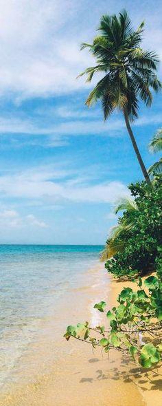 Puerto Rico mit Kindern - die besten Tipps für einen entspannten Familienurlaub in der Karibik.