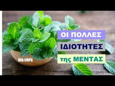 Parsley, Herbs, Plants, Food, Videos, Youtube, Essen, Herb, Meals