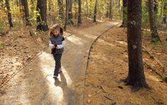 Rachel Carson National Wildlife Preserve, Wells