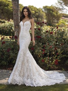 36 Lace Wedding Dresses That You Will Absolutely Love ❤ lace wedding dresses fit and flare with spaghetti straps floral train pronovias Fitted Lace Wedding Dress, Wedding Dresses With Straps, Fit And Flare Wedding Dress, Couture Wedding Gowns, Bridal Gowns, Pronovias Bridal, Pronovias Wedding Dresses, Wedding Dress Gallery, Mermaid Gown