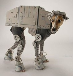 62 of the Best Dog Costumes for Halloween