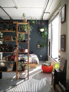 plant shelf room divider -- awesome!