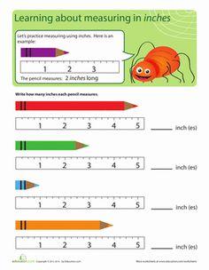 Kindergarten Measurement Worksheets: Measuring Bug: Inches