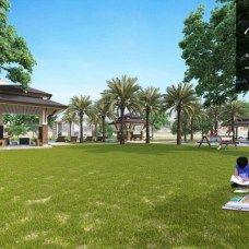 Open Lawn / Picnic Grove
