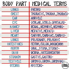 "asapscience: ""Here's a little chart to help you remember medical terminology! Watch our NEW video here: https://youtu.be/K2V7YQhsFo4 """