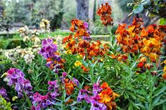 Lecrín Valley Villa Rental Granada Spain. - Google+