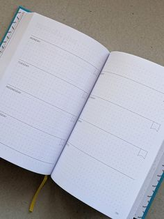 The Positive Bullet Diary