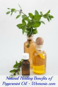 Natural Healing Benefits of Peppermint Oil - Top 15 Aromatherapy Oils and Their Therapeutic Benefits