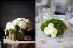 I recently did a white peony and dianthus bouquet for a May wedding.  It was one of the most stunning bouquets I have ever seen (Jardiniere Fine Flowers).  Can't wait to get a photo to show you all.  This shows how the 2 blooms look together.    ((Peony and dianthus bouquet by Flora Bella, photo by Ingman Photography via Style Me Pretty ))